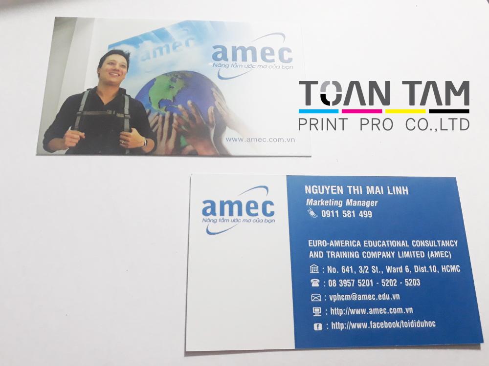Mẫu Thiết Kế Card Công Ty AMEC