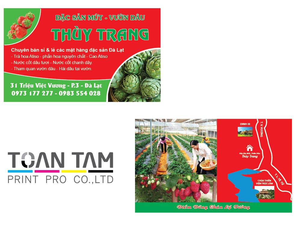 Mẫu Thiết Kế Name Card Thùy Trang