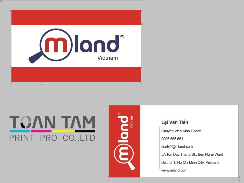 Mẫu Thiết Kế Name Card MLAND
