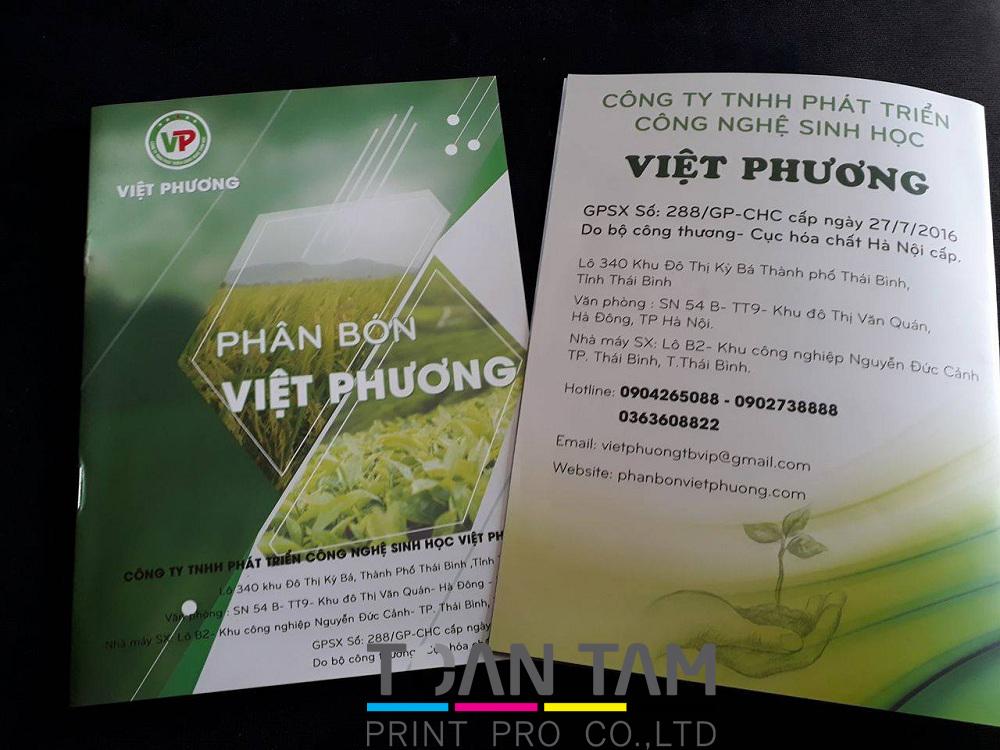 mau in catalogue phan bon viet huong